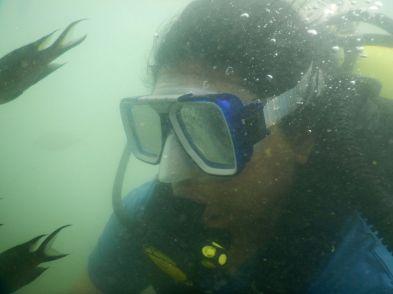 Diving Scenes!